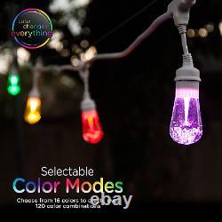 Vintage Seasons LED Warm White & Color Changing Café String Lights